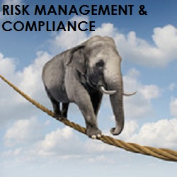 elefante risk management 1