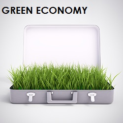 green economy valigia - Copia 2
